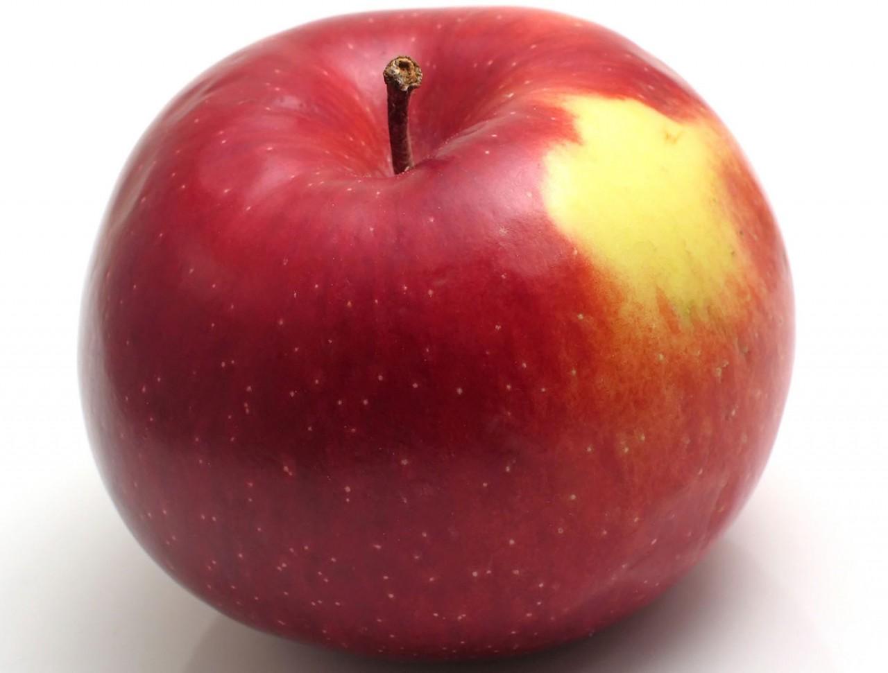 Распространенный сорт с крупными плодами — Айдаред