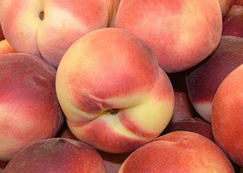 КРУПНОМЕРЫ. Плодовые деревья «Нектарин ЯНТАРНЫЙ, 4 года»