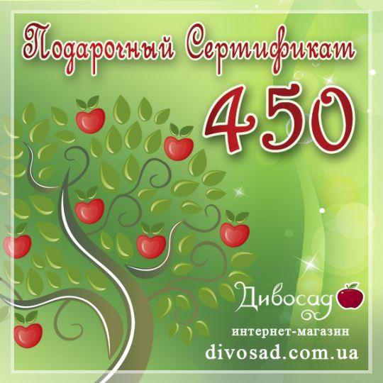 ПОДАРОЧНЫЙ сертификат «450»