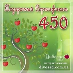 ПОДАРОЧНЫЙ сертификат 450