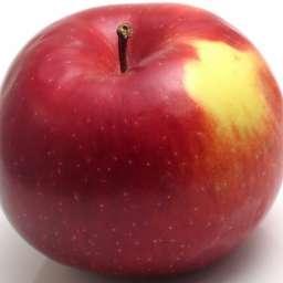 Зимние сорта яблонь АМБРОЗИЯ, 2 года