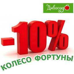 Колесо Фортуны - скидка до 10%! Яблоня осенняя, 2 года