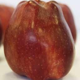 Двухлетние саженцы яблони РEД ЧИФ, 2 года